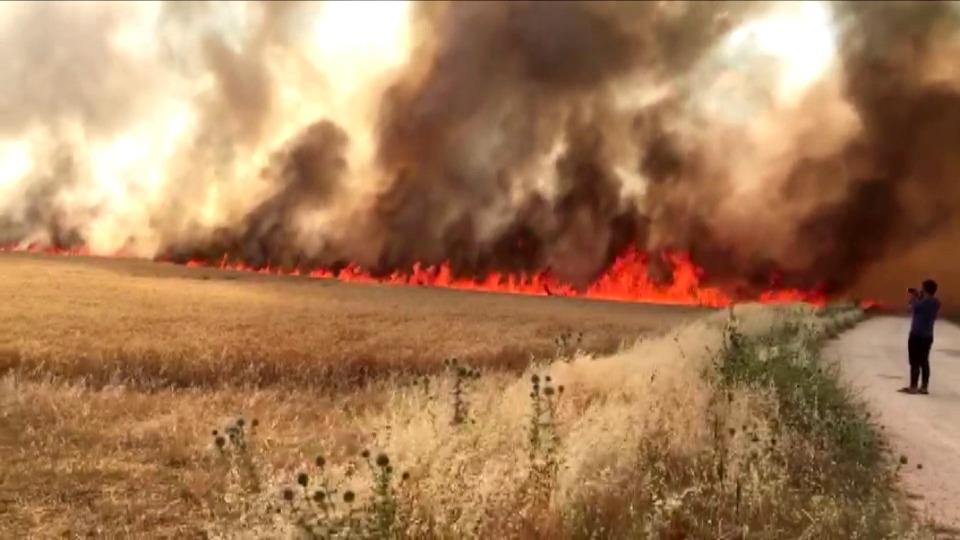 Adıyaman'da bin 100 dönümlük ekili alanda yangın